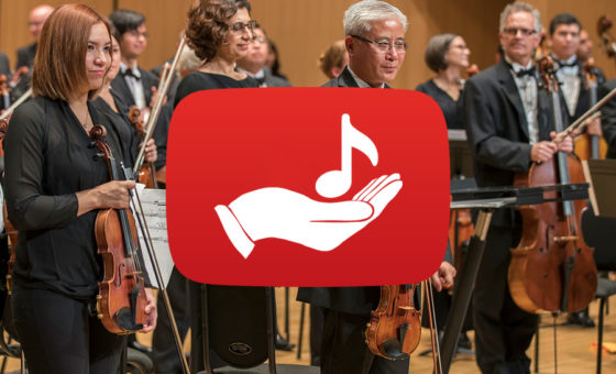 Support the VSO with your financial contribution